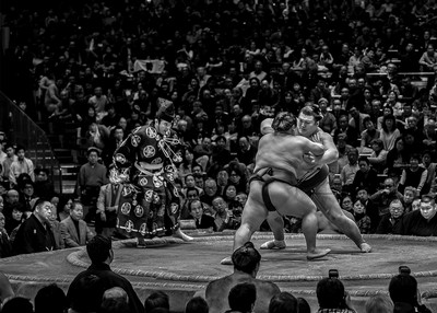 Sumo Wrestlers Jostling For A Win, Rao  Shreyas , India