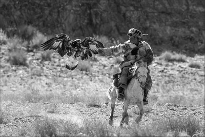 Golden Eagle Landing 11, Kwan  Phillip , Canada