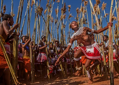Reed Dance5, Chen  Xinxin , China