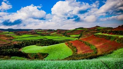 Paradise, LAI  Ming-Hang , Taiwan, Province Of China