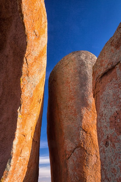 Conversation, Gustavson  Corliss , Australia