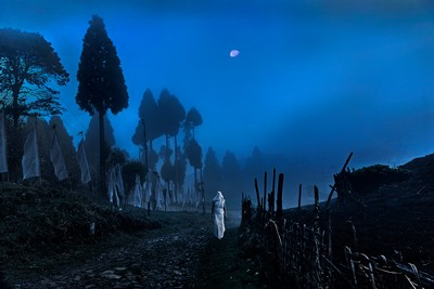 Walking Alone-2, Sarkar  Partha Sarathi , India
