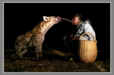 Feeding The Beast, Epstein  Esther , Israel