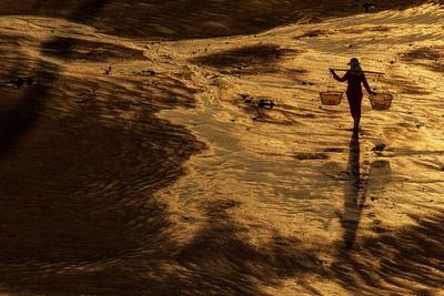 Color_Golden_Sands, Zas Espinosa  Juan , Spain